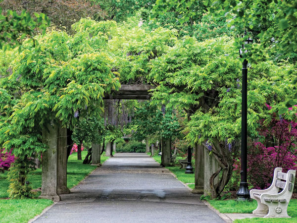 Urban Horticulture at the Brooklyn Botanic Garden (New York Spaces)