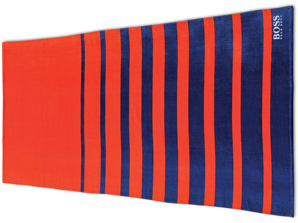 Varied Stripe Beach Towel