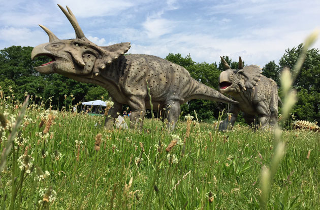 Field Station: Dinosaurs Lets Kids Be Paleontologists for a Day