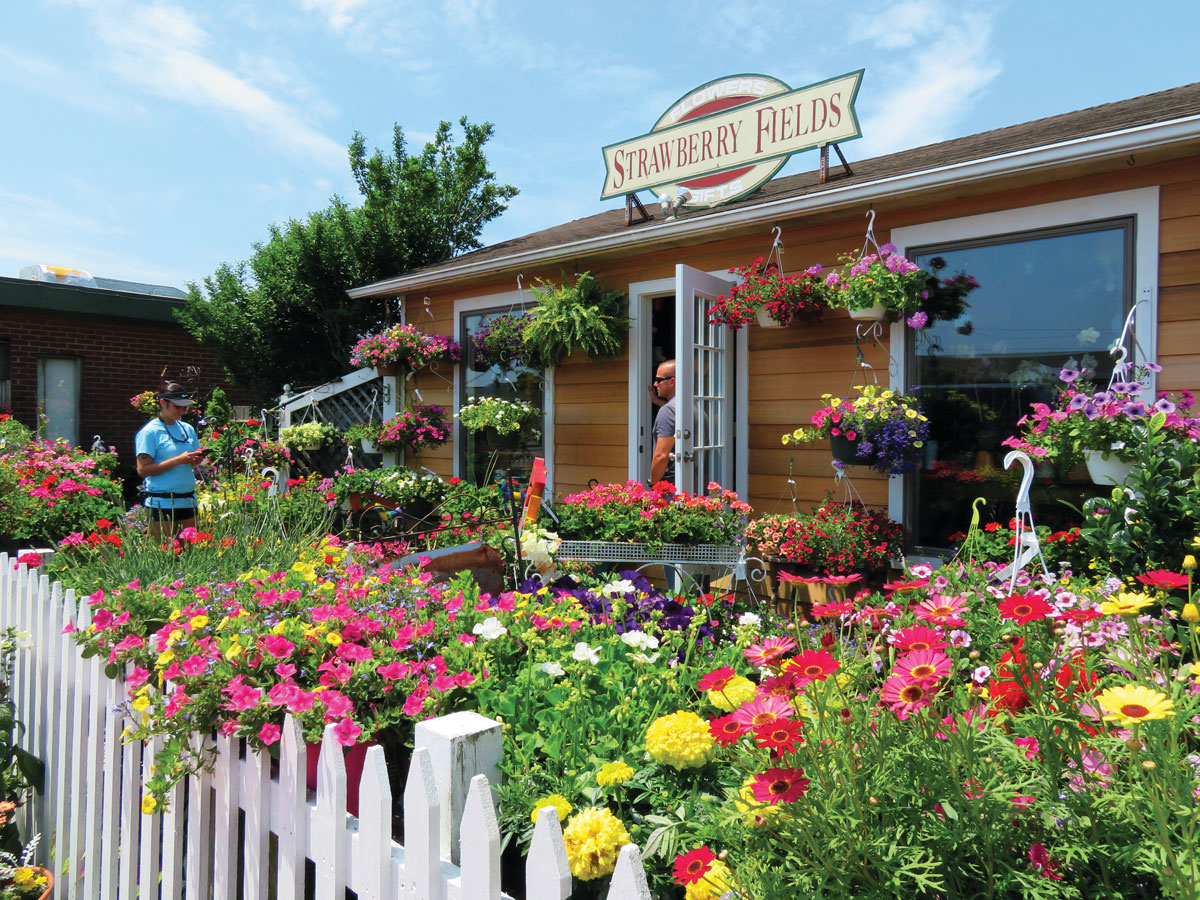 Strawberry Fields is a charming flower shop in town.