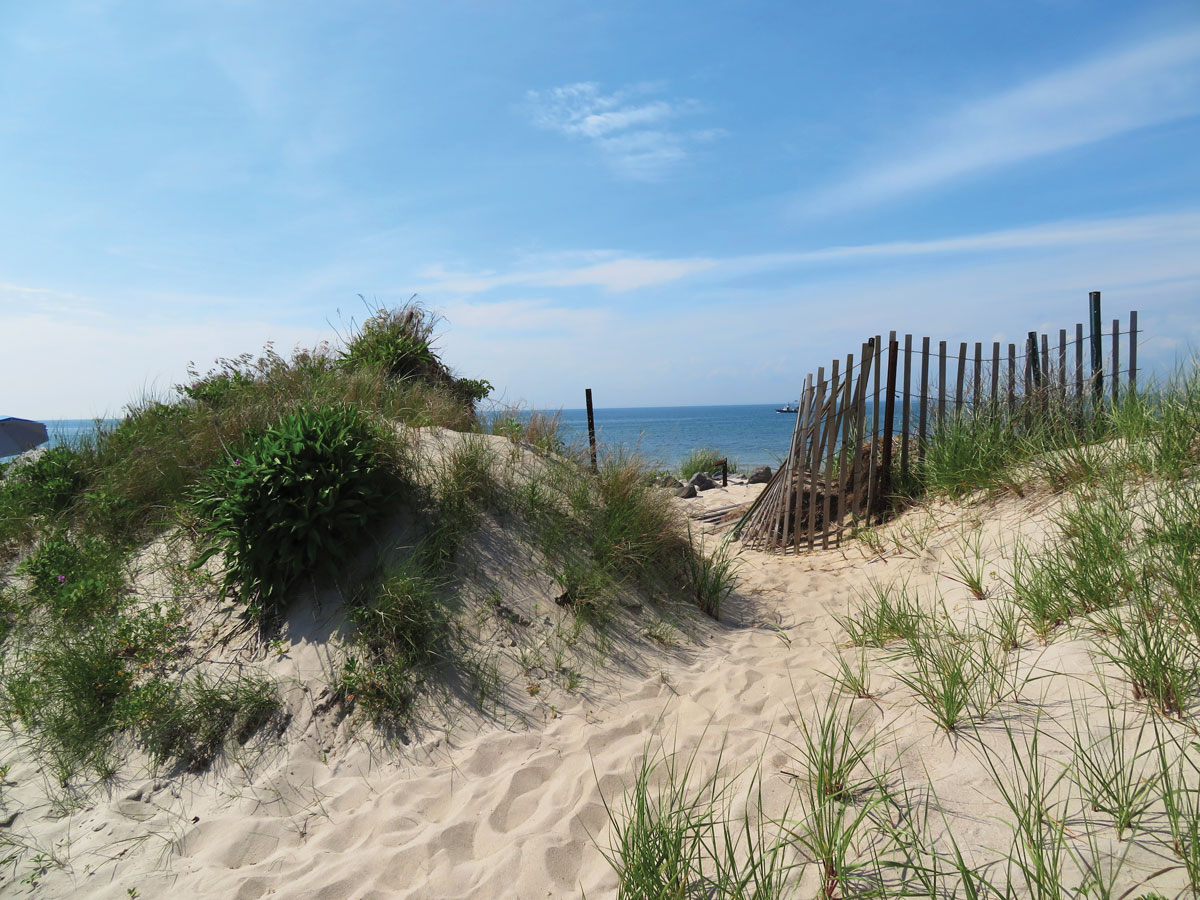 A path leads to the beach.