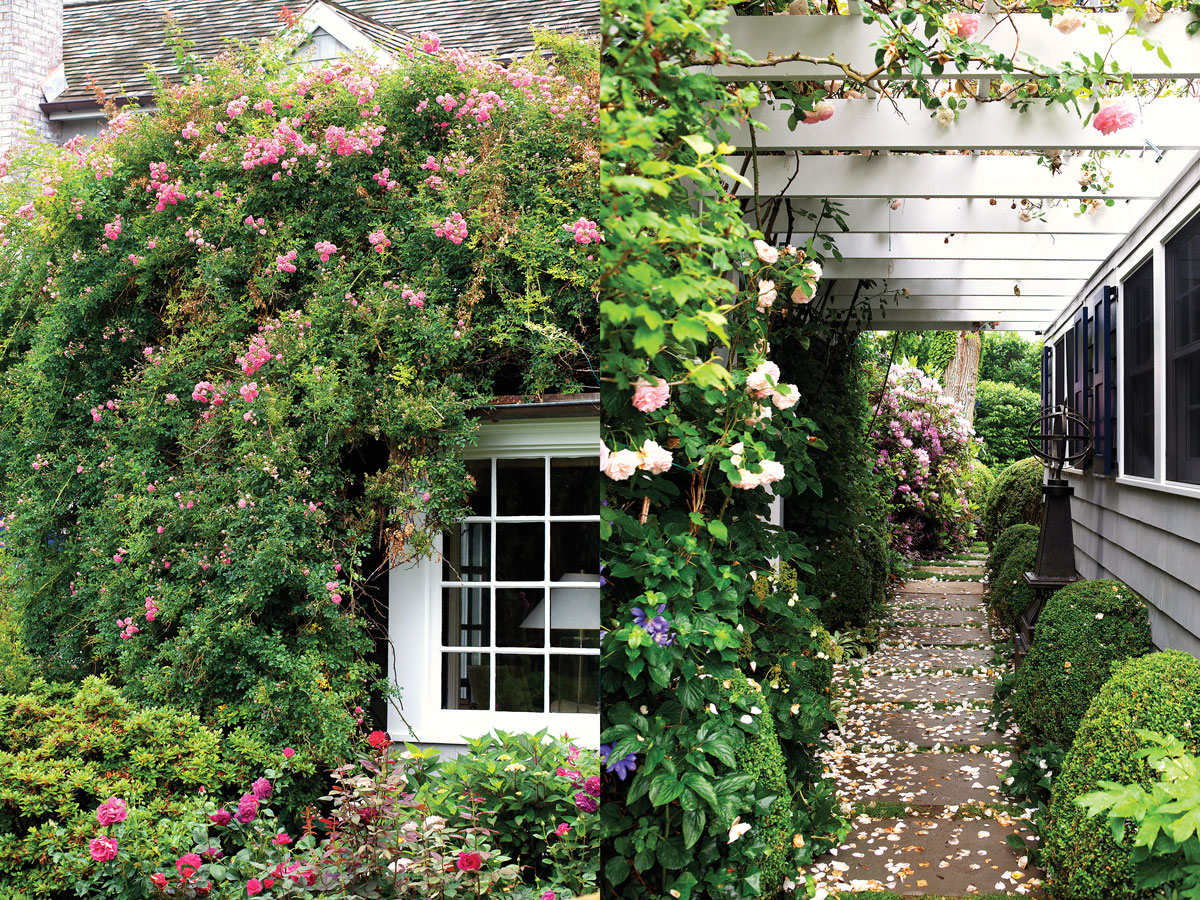 Left: A pergola-covered pathway connects the carriage house to the main house. Right: Roses wander over the structure.