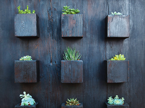Ptacek Home's Wall Planter