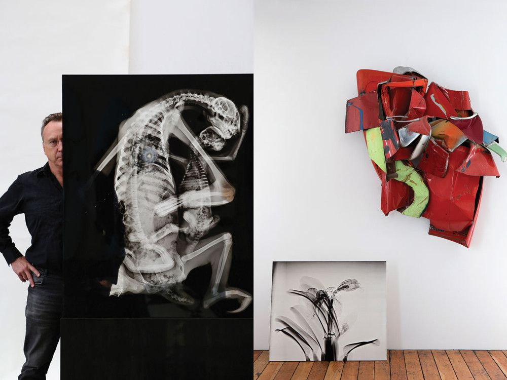Left: In Sloth Pieta, Miller X-rayed a Brazilian sloth—a species suffering due to air pollution and loss of habitat—embracing her offspring. To not-so-subtly illustrate the fragility of biodiversity and the impact we have on the planet, Miller had a friend shoot a bullet right at the sloth's heart, cracking the glass laminated X-ray. Right: Neolithic pottery Miller picked up during a stint teaching at a university in Hong Kong adorns the coffee table and floor. Miller traded a painting for the woven copper screen next to the windsurfers that