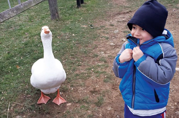Fairfield County Parenting: Why We LOVE It Here