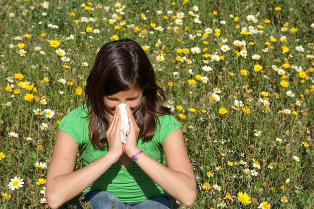 Tips for Families Who Suffer From Allergies