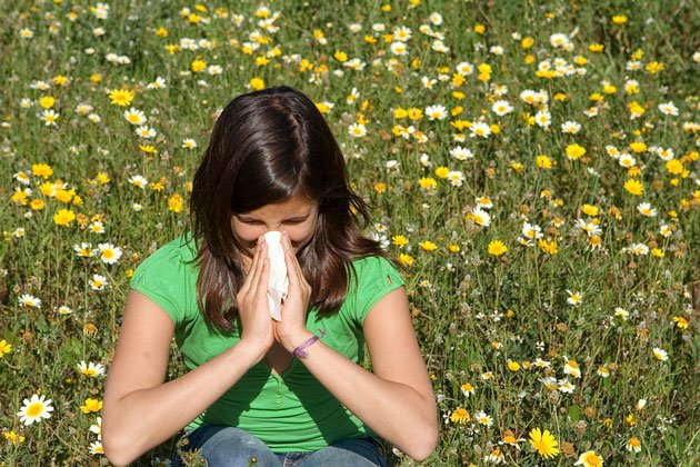 How Can My Family Remedy Allergy Symptoms Without Avoiding the Outdoors?