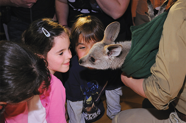 Family Events in Manhattan for Animal Lovers in April