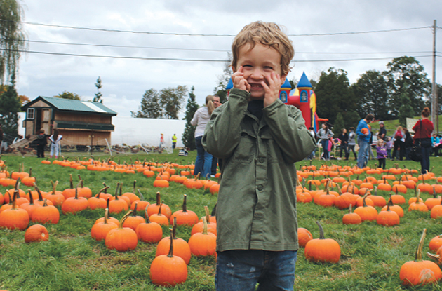 Pick Your Own Pumpkin Farms in New Jersey