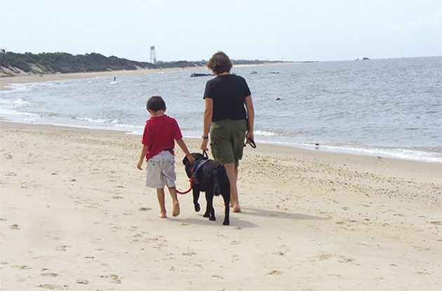 How Dogs Help Kids With Special Needs