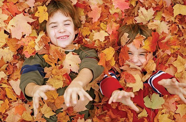 Leaf Peeping: A Fun Family Activity in the Fall