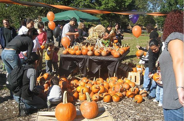Halloween 2015 Activities for Kids in Brooklyn