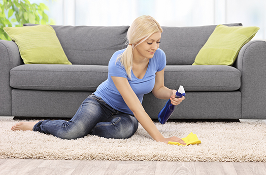 Expert Carpet Cleaning Tips for Families