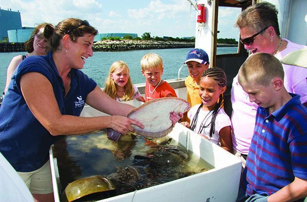 Top Educational Activities for Kids in Westchester in July