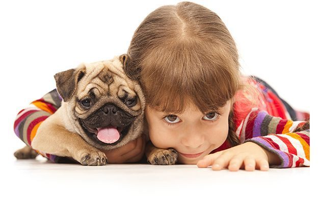 The Health Benefits of Kids Having a Pet