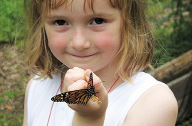 The Greenburgh Nature Center: Where Every Season Is Special
