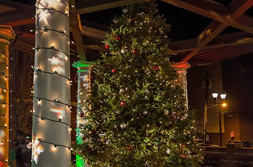 Tree Lightings in Rockland, Westchester, and Fairfield