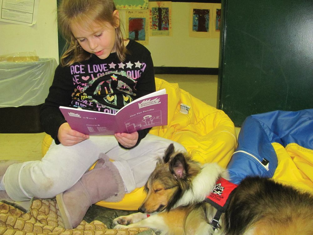 Hudson Valley Visiting Pets reading animals