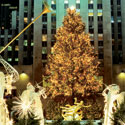 This Week in New York City: The Holidays Begin With Tree Lightings, Store Windows & More