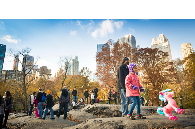 kids playing in fall on rock in central park