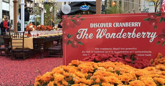Cranberries for the Big Apple: A Bog in NYC