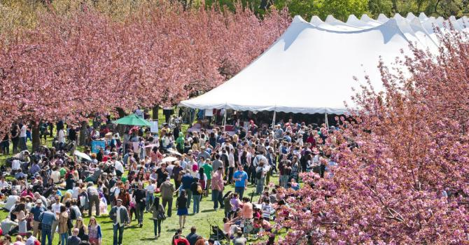 Top 10 NYC Must-See Spring Festivals