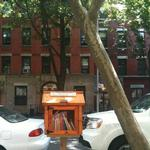 Spotted: Little Free Libraries Around New York