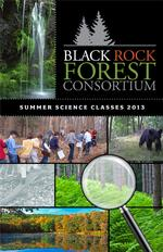 Black Rock Forest Consortium Announces Summer Science Program