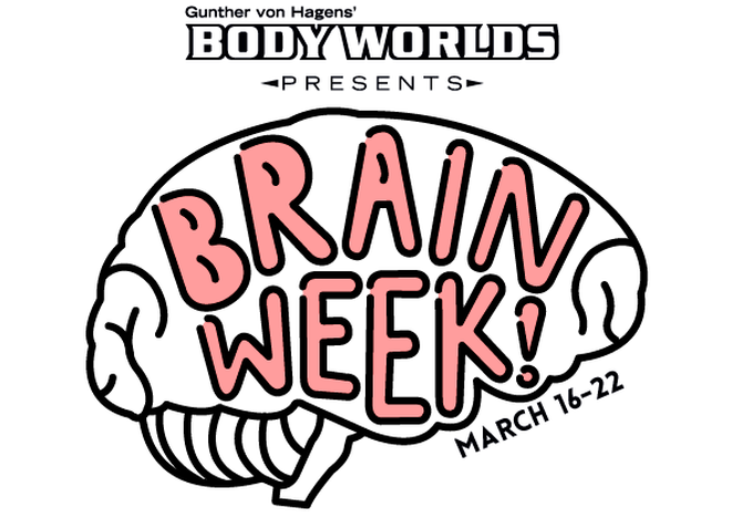 A Smart Discount on Brain Week at Discovery Times Square