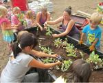 Kids Volunteer to Create Brooklyn Garden