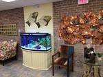 Village East Gifted Incorporates Nature in Huntington Station Location