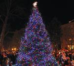 Tree Lightings and Menorah Lightings in Westchester