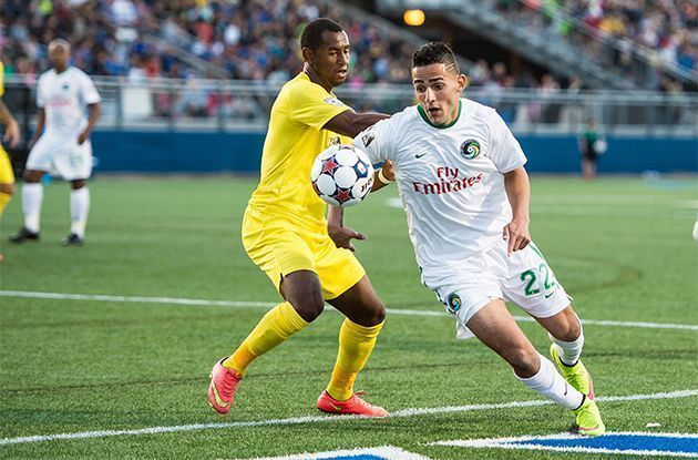 NY Cosmos in Playoff Contention
