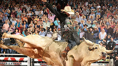 Buckle Up New York! Join the Professional Bull Riders at Madison Square Garden
