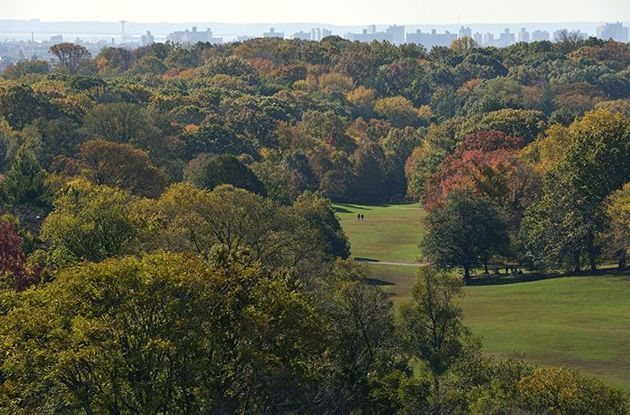 5 Reasons We Love Prospect Park