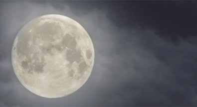 Sail Away Under a Full Moon with Spirit of New York Cruises