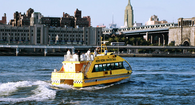 Save $5 on New York Water Taxi's Audubon Winter EcoCruise