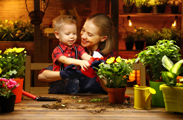 Houseplants Can Benefit Your Family's Mental, Physical, and Emotional Well-Being