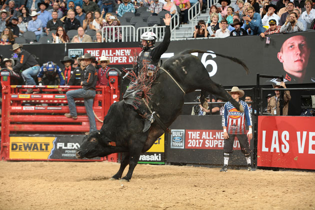 Professional Bull Riders Return to Long Island This Fall
