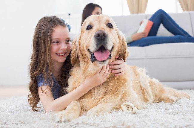 Bideawee's Pet Therapy Program Introduces Therapy Dog Reading Program to Long Island Schools