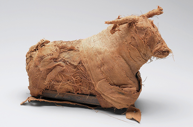Brooklyn Museum to Debut Animal Mummies Exhibit