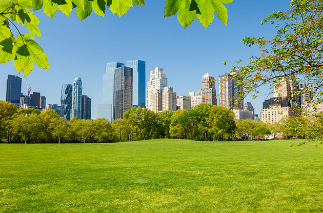 QUIZ: Which NYC Park Are You?