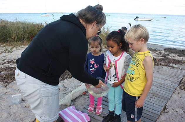 Fire Island School District Expands Pre-K and Non-Resident Enrollment