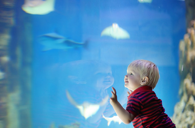 4 Ways to Raise More Curious Kids