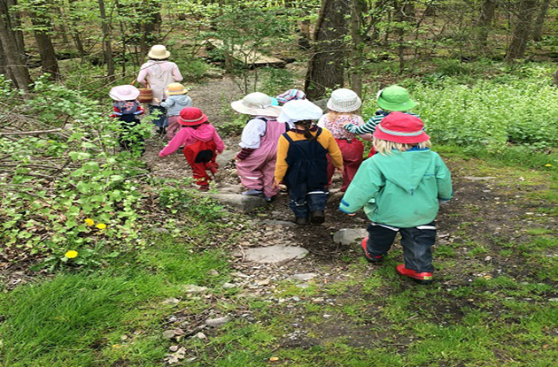 Green Meadow Waldorf School Announces Forest Preschool for 2018 School Year