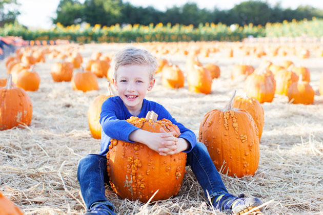 Free Halloween Events for Families in Westchester