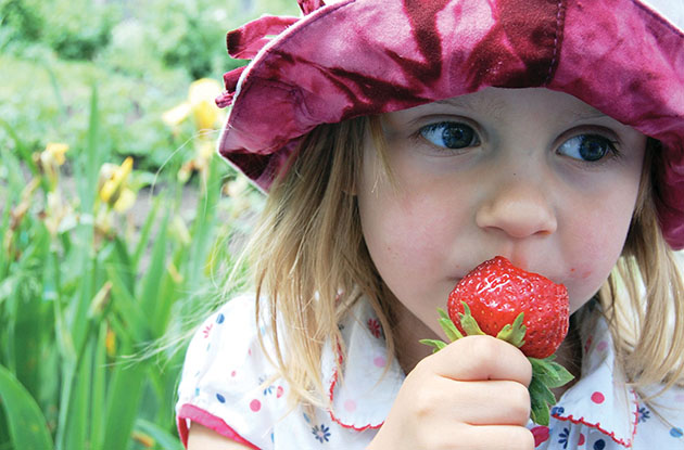4 Recipes to Celebrate National Strawberry Month
