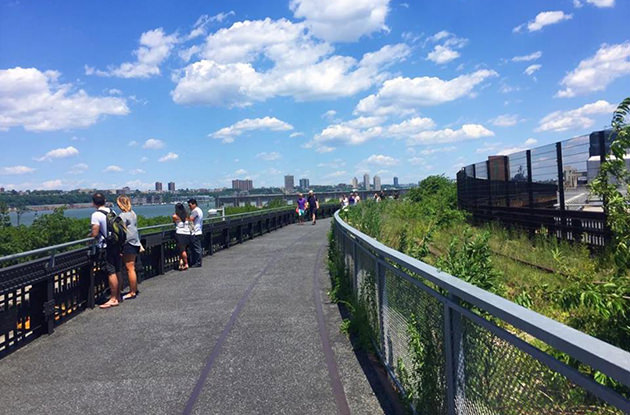 Everything You Need to Know About Visiting the High Line with Kids