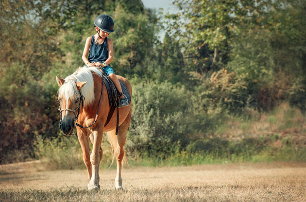 Summer Camps That Offer Horseback Riding Programs for Campers in Westchester County