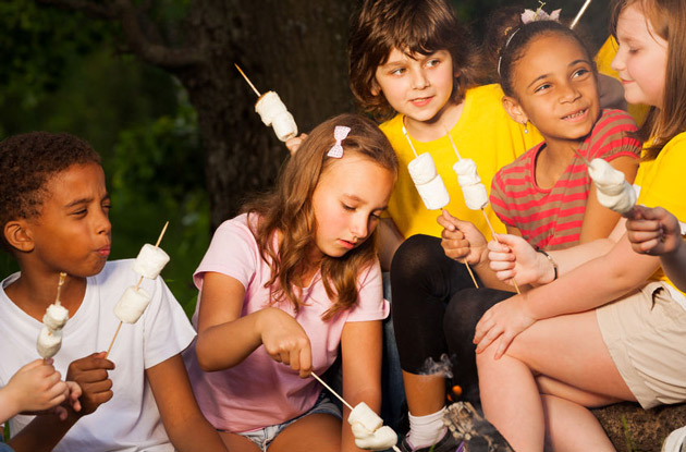 Westchester County Camps by Programs and Services